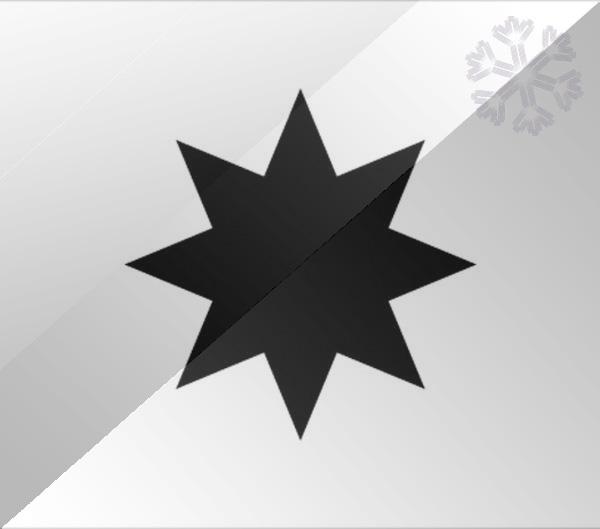 De vlag van Alphen aan den Rijn