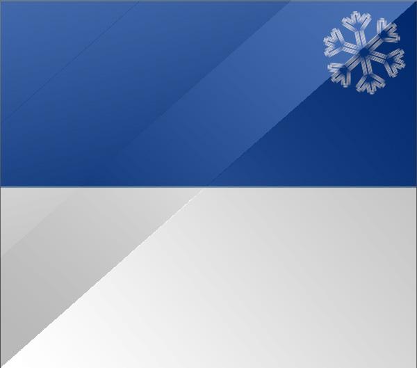 De vlag van Assen