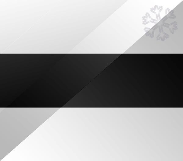 De vlag van Delft
