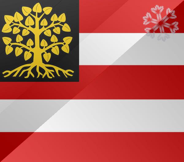 De vlag van Den Bosch
