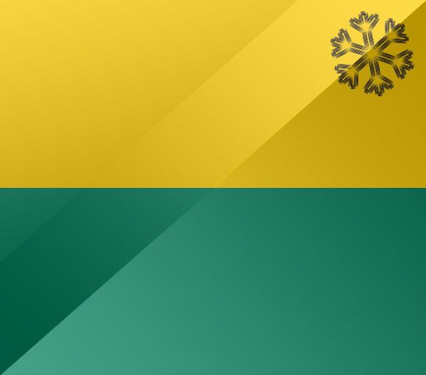 De vlag van Den Haag