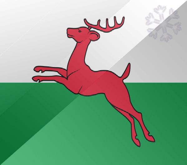 De vlag van Drachten