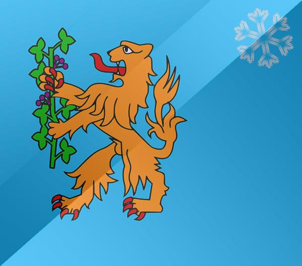 De vlag van Eerbeek