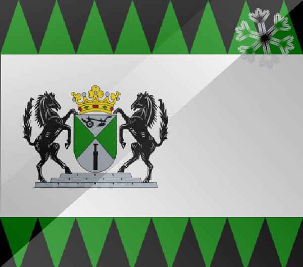 De vlag van Emmen