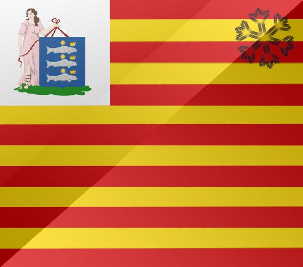 De vlag van Enkhuizen