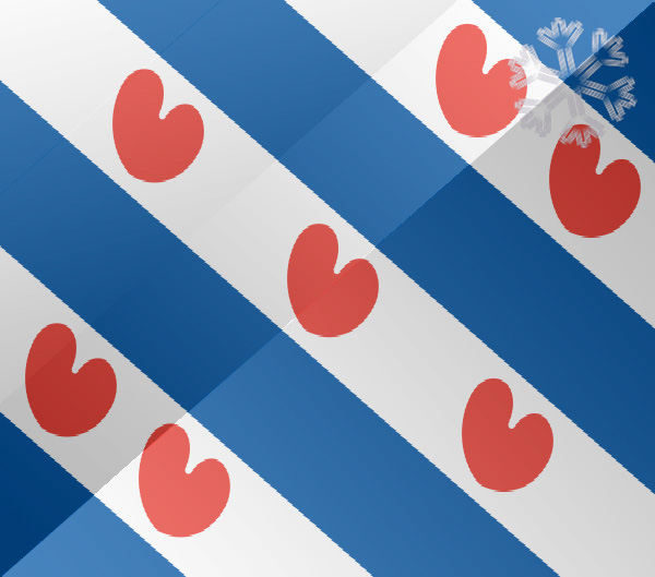 De vlag van Heerenveen