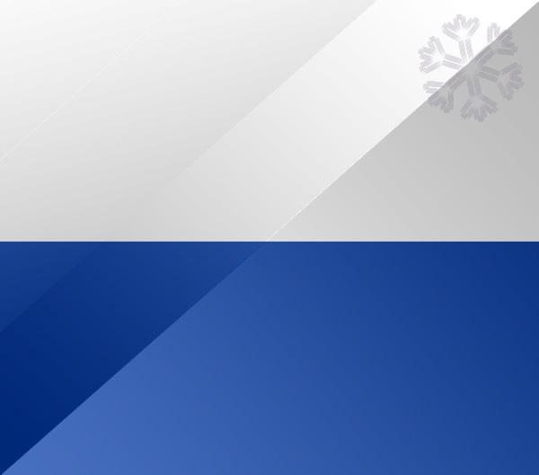 De vlag van Kampen