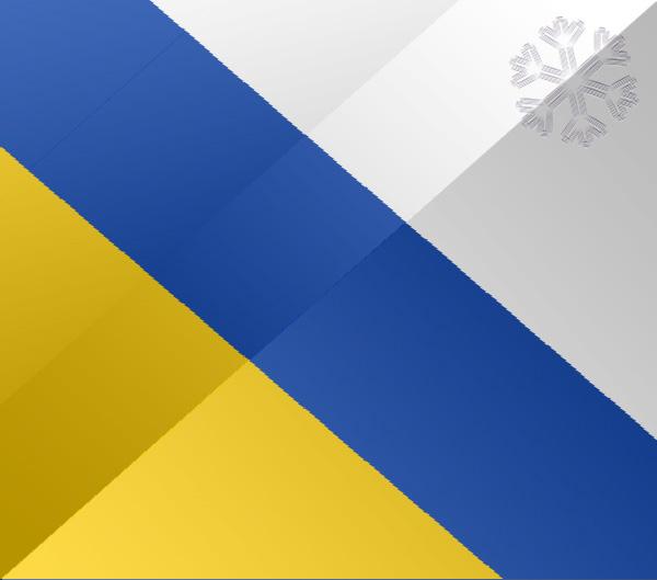 De vlag van Ommen