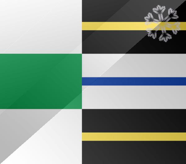 De vlag van Stadskanaal