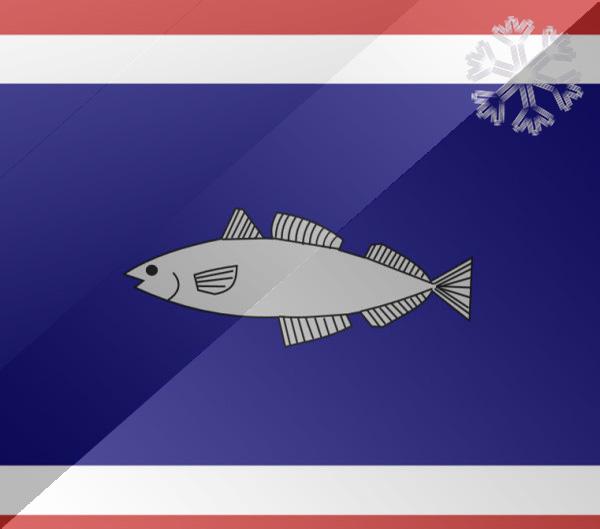 De vlag van Urk