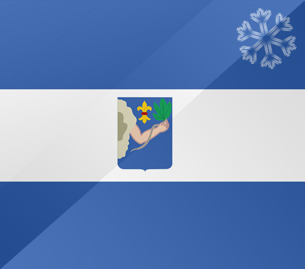 De vlag van Veendam